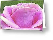 Aphrodite's Rose Greeting Card