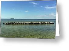 Apollo Beach Florida Greeting Card