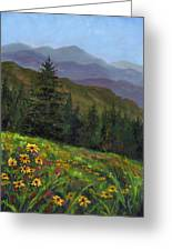 Appalachian Color Greeting Card