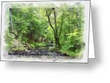 Appalachian Creek Greeting Card