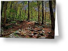 Appalachian Trail Clearing Greeting Card