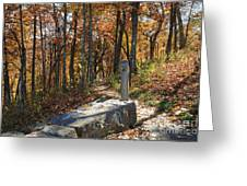 Appalachian Trail In Shenandoah National Park Greeting Card