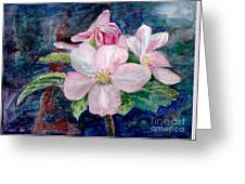Apple Blossom - Painting Greeting Card
