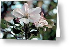 Apple Blossom Time Greeting Card
