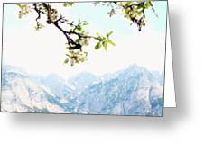 Apple Blossoms And Mountains Greeting Card