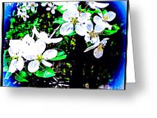 Apple Blossoms In Blue White Mist Greeting Card