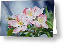Apple Blossoms With Honeybee Greeting Card