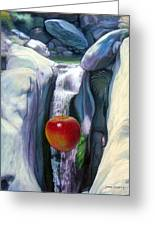 Apple Falls Greeting Card