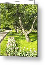 Apple Garden Greeting Card