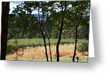 Apple Hill Trees Greeting Card