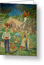 Apple Industry Greeting Card