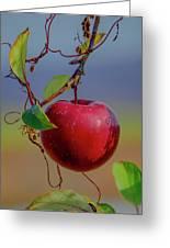 Apple On A Tree Greeting Card