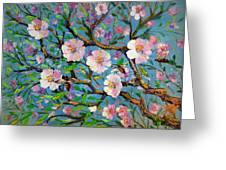 Apple Tree Blossom Greeting Card