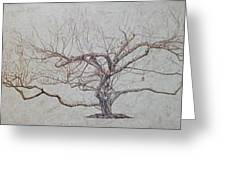 Apple Tree In Winter Greeting Card