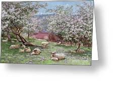 Appleblossom Greeting Card