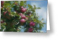Apples And Sky Greeting Card