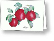 Apples In Autumn Greeting Card