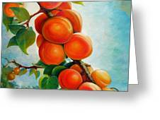 Apricots In The Garden Greeting Card