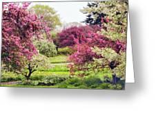 April Afterglow Greeting Card