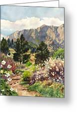 April Hike Greeting Card