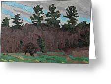 April White Pine Forest Greeting Card