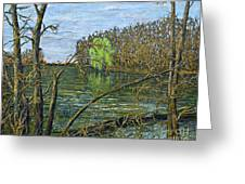 April Willow On Milwaukee River Greeting Card