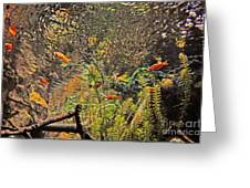 Aquarium Reflections Greeting Card