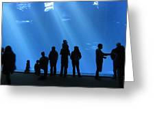 Aquarium Silhouettes Greeting Card