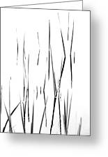 Aquatic Reeds Black And White Greeting Card