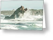 Aquatic Spray Greeting Card