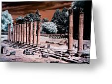 Aquileia, Roman Forum Greeting Card by Helga Novelli