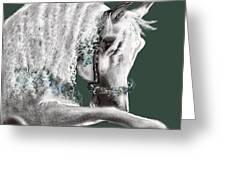 Arabian Greeting Card
