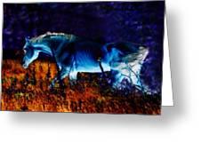 Arabian Stallion Greeting Card by ELA-EquusArt