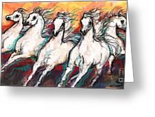 Arabian Sunset Horses Greeting Card
