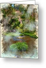 Aravaipa Creek Greeting Card