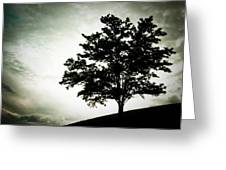 Arbol Greeting Card