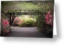 Arbor Walk Greeting Card