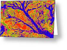 Arboreal Plateau 36 Greeting Card