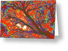 Arboreal Plateau 44 Greeting Card