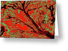Arboreal Plateau 9 Greeting Card