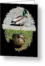 Arboretum Quackers Greeting Card