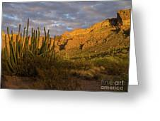 Arch Canyon 3 Greeting Card