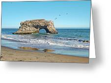 Arch In The Sea With Pelicans Flying By, At Natural Bridges State Beach, Santa Cruz, California Greeting Card