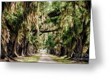 Arch Of Oaks - Evergreen Plantation Greeting Card