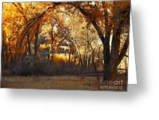 Arch Of Trees Greeting Card