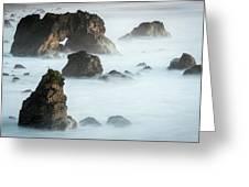 Arched Rock Sea Bird Greeting Card