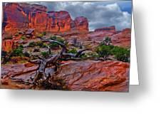 Arches National Park Rain Greeting Card