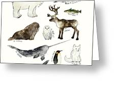 Arctic And Antarctic Animals Greeting Card