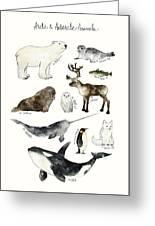 Arctic And Antarctic Animals Greeting Card