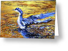 Arctic Loon On Golden Pond Greeting Card